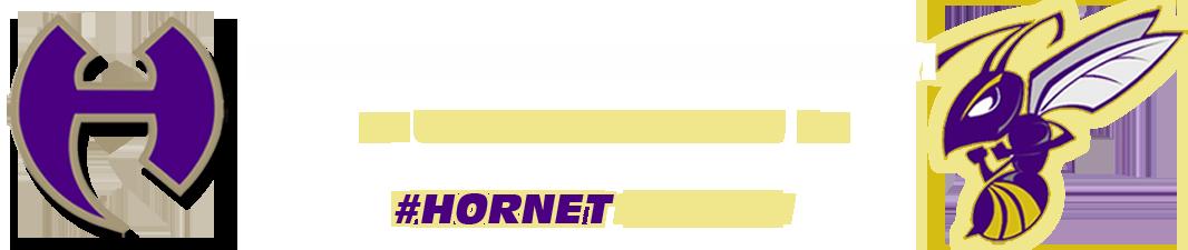 Hiram Hornets Baseball